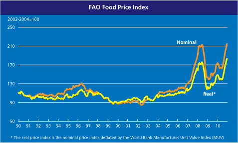 World Food Price Index